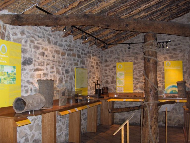 Ecomuseo de Aras de los Olmos