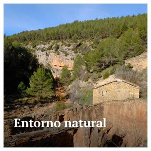 Entorno natural - Aras de los Olmos