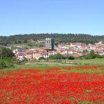Cómo llegar a Aras de los Olmos en la comarca de los Serranos